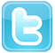 Twitter icon on rclme